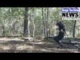 TERMINATOR PROTOTYPE RUNS FOREST MAZE - BOSTON DYNAMICS