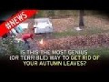This Is A Terrible Or Genius Way To Get Rid Of Your Fall Leaves
