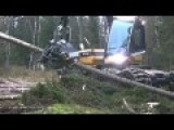 This Tree Cutting Machine Is Monstrous And Monstrously Satisfying