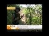 Ukraine War Reporter With Militia Under Ilovajskom