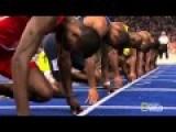 Usain Bolt Vs A Cheetah