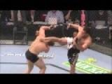 UFC Knockouts Vs Boxing Knockouts 20 BEST Extreme