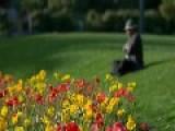 Unknown With Hat Listening To Regina Coeli