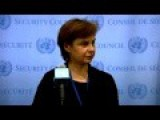 UN Security Council Meeting On Ukraine