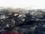 Ukrops Field Camp After Rebels Attack, Kalinovka Village Near Debaltseve 07 12 14