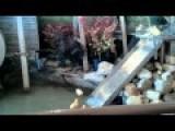 Very Elaborate Duckling Water Slide