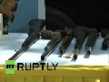 Venezuela: Watch Weapons Be DESTROYED To Build Homes
