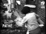 Women Bricklayers 1954