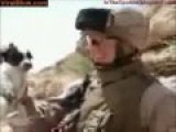 WTF? US Marine Throws Puppy Off Cliff