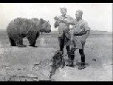 Wojtek, Polish Soldier Bear In WWII, Animal, Bear, Soldier, Mascot