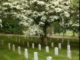Where Valor Rests - Arlington National Cemetary