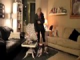 What Your Dog Does When You Leave Home Funny