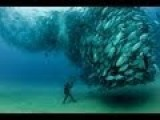 World's Most Amazing Photos Part 22 | Blow Your Mind