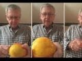 Watch How To Peel The Skin Of A Mango Using A Spoon