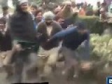 WTF: Dog Fight For Food At Benazir Bhutto Death Anniversary Pakistan