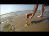 Watch What Happens When This Guy Pours Salt On A Beach