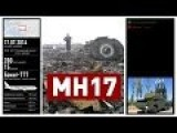 Who Shot Down MH17?
