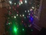 YourSay Christmas Special , #payitforward