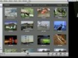 IPhoto Independent Web Galleries