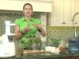 How To Make Juiced Swiss Chard Cilantro Soup