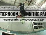 Afternoon In The Park Featuring David Gonzalez