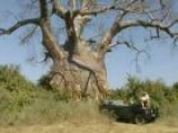A Tour Of The Lower Zambezi National Park In Zambia