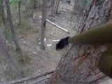 Black Bear Hunting In The North Country