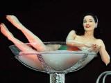 Dita Von Teese&#39 S Burlesque