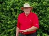 Dave Pelz' S 3 Foot Putting Circle Drill