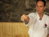 How To Do A Basic Karate Punch