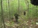 Hunting Turkeys At Camp Hope