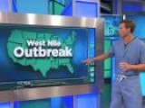How To Avoid The West Nile Virus Outbreak