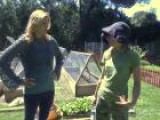 How To Plant A Vegetable Garden At Your Home