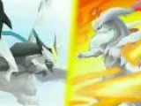 Pokemon Black 2 And White 2 Nintendo Direct Trailer