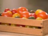 Summer Tomato Buying And Serving Tips