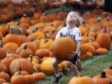 Spooky Storm: How Does Sandy Affect Halloween?