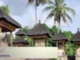 Visit Ubud In Indonesia