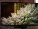 Vizio Offers The Least Expensive 60-Inch LED TV You Will Find