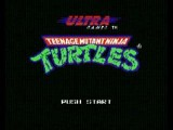 Teenage Mutant Ninja Turtles NES Overworld II Music