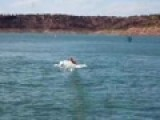 Naked Drunk Water-skiing