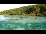 Raja Ampat Archipelago: The Last Paradise On Earth