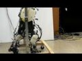 Biomechanical Legs Are A Giant Step For Robot-kind