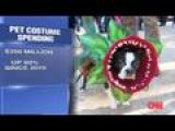 Booming Business Of Halloween Costumes For Pets