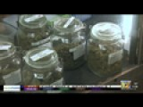 County Marijuana