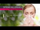 Dealing With Spring Allergies