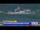 Fins Versus Fists, Pro Surfer Fights Off Shark On Live TV