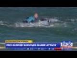 Fins Versus Fists, Pro Surfer Fights Off Shark On Live TV