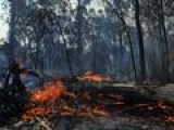 Man Killed As Wildfires Rage Across Australia
