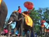 Thai Elephant Park Opens, Signals Flood Recovery