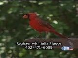 Bird Watching And Hunting Season Preparations- Outdoor Report